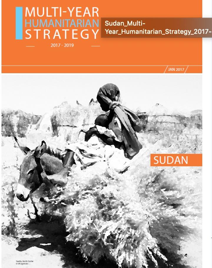 Multi-Year Humanitarian Strategy Sudan